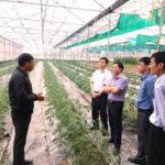 Hội ND Lạng Sơn: Vận động hội viên, nông dân chung sức xây dựng nông thôn mới